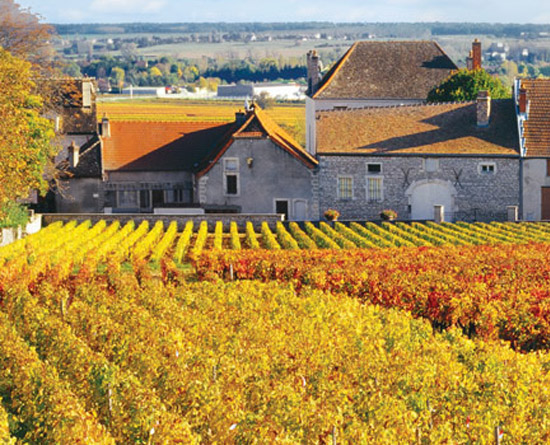 Provence to Burgundy_550x445